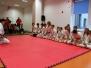 III Dzień Japoński - Pokazy Śląskiej Akademii Aikido