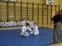 Egzaminy w Śląskiej Akademii Aikido luty 2017